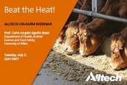 Alltech_Beat_the_heat