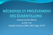 Necropsie_Prelevement_echantillon_Merck