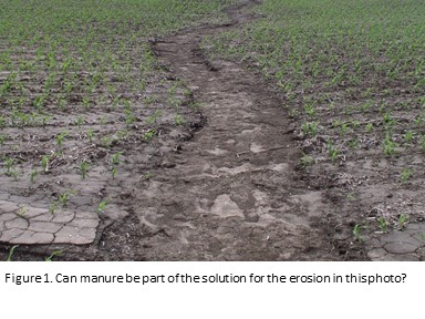 Manure & Erosion - graphic 1a